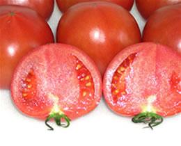 トマトの写真