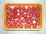 いろんな形のトマト