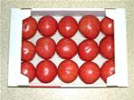 同じサイズのトマト箱詰め